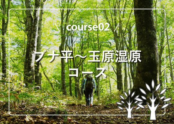 ブナ平〜玉原湿原コース