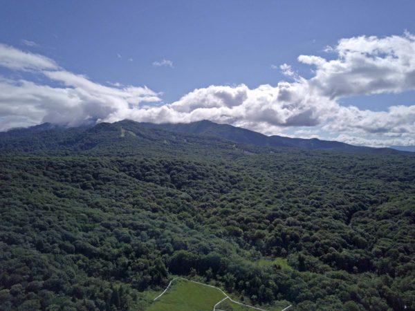 ブナ平〜鹿俣山